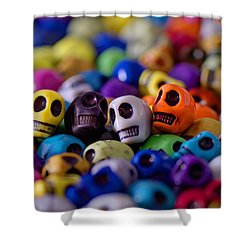Friends Shower Curtain by Mike Herdering