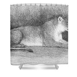 Lion Shower Curtain by Granger