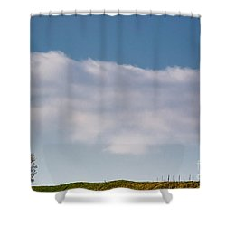 Lonely Tree Shower Curtain by Mats Silvan
