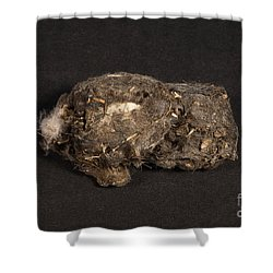 Owl Pellet Shower Curtain by Ted Kinsman