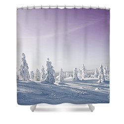 Winter Shower Curtain by Kati Molin