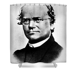 Gregor Mendel, Father Of Genetics Shower Curtain by Science Source