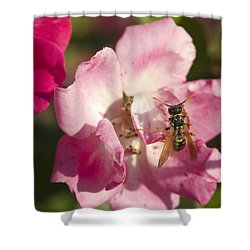 Macro Shower Curtain by Jack Zulli