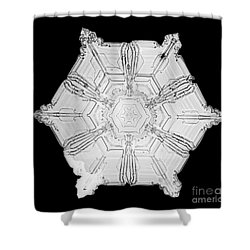 Snowflake Shower Curtain by Science Source