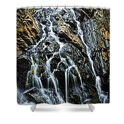 Waterfall Shower Curtain by Elena Elisseeva