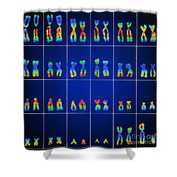 Male Karyotype Shower Curtain by Omikron