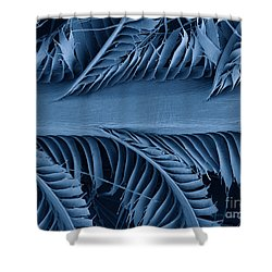 Sem Of Eastern Bluebird Feathers Shower Curtain by Ted Kinsman