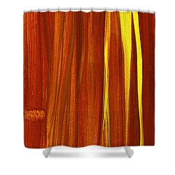 Untitled Shower Curtain by Taylor Webb