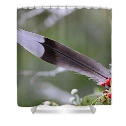 A Birds Christmas Shower Curtain by Travis Truelove