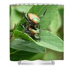 A Bugs Day Shower Curtain