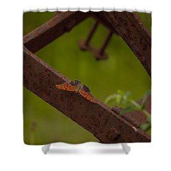 A Butterflys Resting Place Shower Curtain by Karol Livote