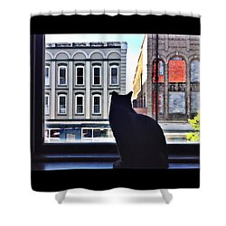 A Cat's View Shower Curtain