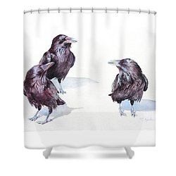 A Conspiracy Of Ravens Shower Curtain