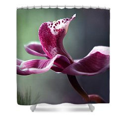 A Cup Of Ambrosia Shower Curtain