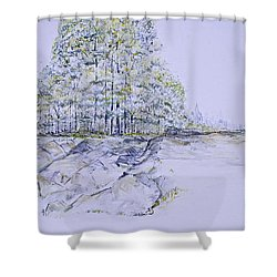 A Day In Central Park Shower Curtain