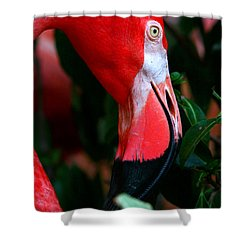 Shower Curtain featuring the photograph A Delicate Shade Of Power by Lon Casler Bixby