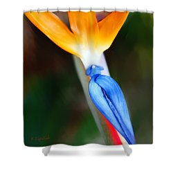 Shower Curtain featuring the photograph A Different Birds Eye View by Kerri Ligatich