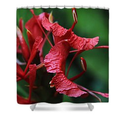 Shower Curtain featuring the photograph A Different Point Of View by Kerri Ligatich