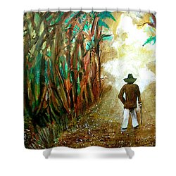 A Fall Walk In The Woods Shower Curtain
