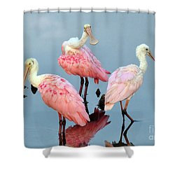 Shower Curtain featuring the photograph A Family Gathering by Kathy Baccari