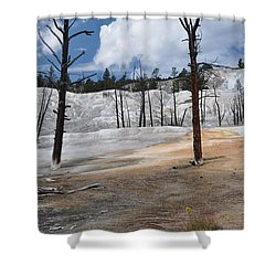 A Flower Blooms In Mammoth Hot Springs Shower Curtain