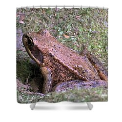 Shower Curtain featuring the photograph A Friendly Frog by Chalet Roome-Rigdon
