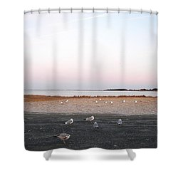 Shower Curtain featuring the photograph A Gathering On Rehoboth Bay by Pamela Hyde Wilson