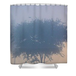 A Gothic Silhouette Shower Curtain by Maria Urso