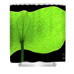 A Huge Green Lotus Leaf Shower Curtain by Sabrina L Ryan
