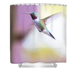 A Humming Bird In The Rocky Mountains Shower Curtain by Ellie Teramoto
