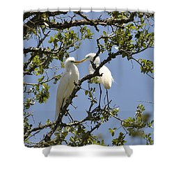 A Kiss Is Just A Kiss... Shower Curtain
