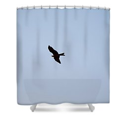 A Kite Flying High In The Sky Shower Curtain by Ashish Agarwal
