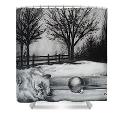 A Lazy Winter Day Shower Curtain by Carla Carson