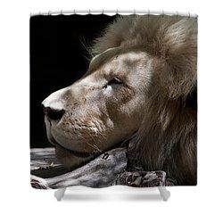 A Lions Portrait Shower Curtain by Ralf Kaiser