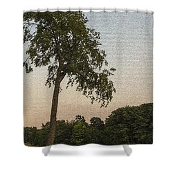 A Lonely Park Bench Shower Curtain