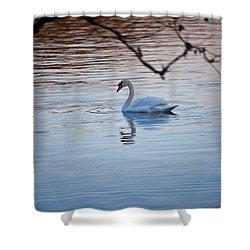 A Lonely Swans Late Afternoon Shower Curtain by Karol Livote