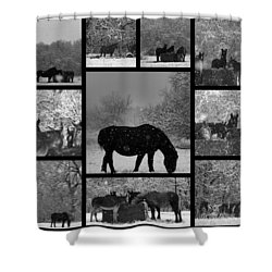 A Long Winter Shower Curtain by Christy Leigh