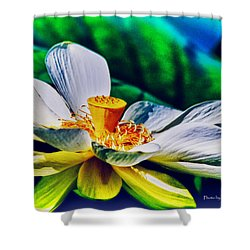 A Lotus Brightly Shower Curtain