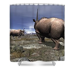 A Pair Of Male Elasmotherium Confront Shower Curtain by Walter Myers