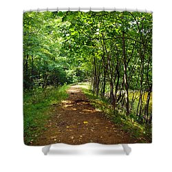 A Path Around The Pond Shower Curtain by Robert Margetts