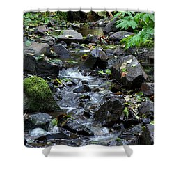 Shower Curtain featuring the photograph A Peaceful Stream by Chalet Roome-Rigdon