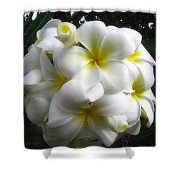 Shower Curtain featuring the photograph A Perfect Bouquet  by Kerri Ligatich