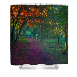 Shower Curtain featuring the painting A Place Of Mystery by Joe Misrasi
