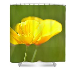 A Pretty Poppy View Shower Curtain