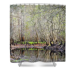 A Quiet Back Woods Place Shower Curtain by Carolyn Marshall