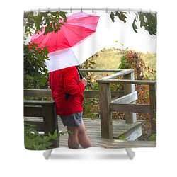 A Rainy Summer's Day Shower Curtain by Karol Livote