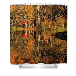 A Reflection Of October Shower Curtain by Karol Livote