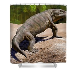 A Seymouria Baylorensis Shower Curtain by Sergey Krasovskiy