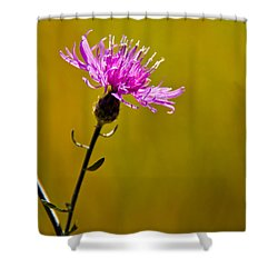 A Solitary Moment Shower Curtain by Nancy Harrison