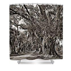 A Stroll Through Time Monochrome Shower Curtain by Steve Harrington